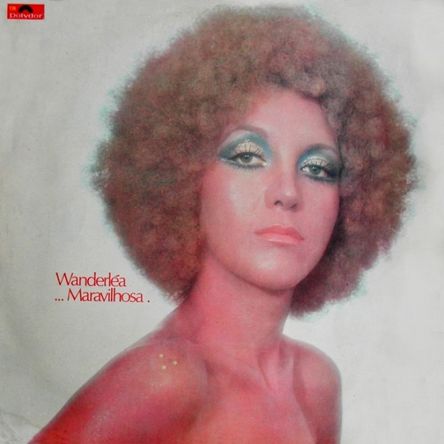 Capa do disco que Wanderléa reproduzirá no Palco do Municipal