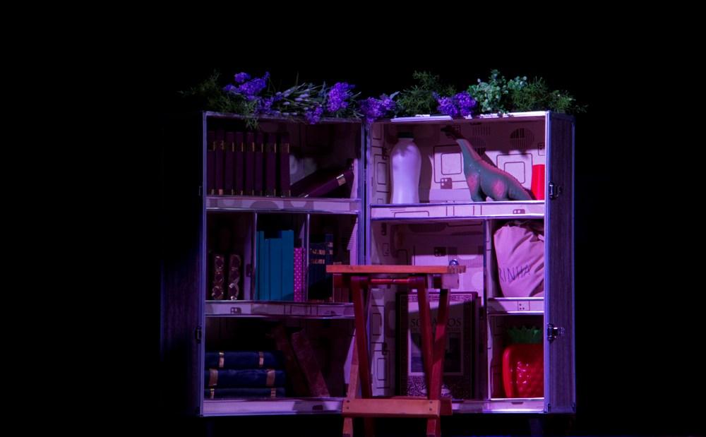A mala-biblioteca e os demais adereços utilizados em cena.